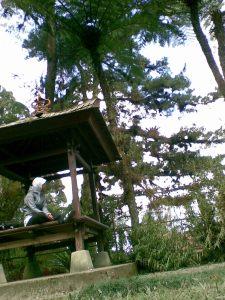 Gazebo di taman anggrek